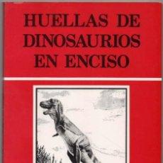 Libros de segunda mano: HUELLAS DE DINOSAURIOS EN ENCISO - RAFAEL BRANCAS, JORGE BLASCHKE Y JULIO MARTINEZ - ILUSTRADO*. Lote 118534679