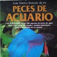 Libros de segunda mano: GUÍA PRÁCTICA ILUSTRADA DE LOS PECES DE ACUARIO. DICK MILLS Y DR. GWYNNE VEVERS. EDITORIAL BLUME. Lote 118728227