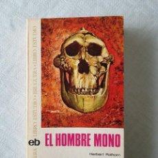 Libros de segunda mano: EL HOMBRE MONO. EDIT. BRUGUERA, 1971 ( 1ª EDICIÓN EN ESPAÑOL). Lote 118739523