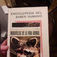 Libros de segunda mano: MARAVILLAS DE LA VIDA ANIMAL. ED MATEU 1963. Lote 118854346
