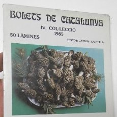 Libros de segunda mano: BOLETS DE CATALUNYA. IV. 1985. 50 LÀMINES. Lote 119109523