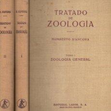 Libros de segunda mano: D' ANCONA : TRATADO DE ZOOLOGÍA - DOS TOMOS (LABOR, 1960). Lote 119320571