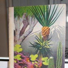 Libros de segunda mano: JARDIN DE ACLIMATACION DE LA OROTAVA. GUIA DESCRIPTIVA.TENERIFE.CANARIAS. CON PLANO. UNA JOYA. Lote 120134567