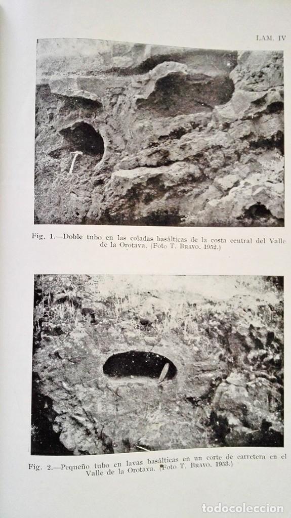 Libros de segunda mano: 1954 Boletín Extraordinario Historia Natural Real Sociedad Española - Eduardo Hernández Pacheco - Foto 13 - 49264461