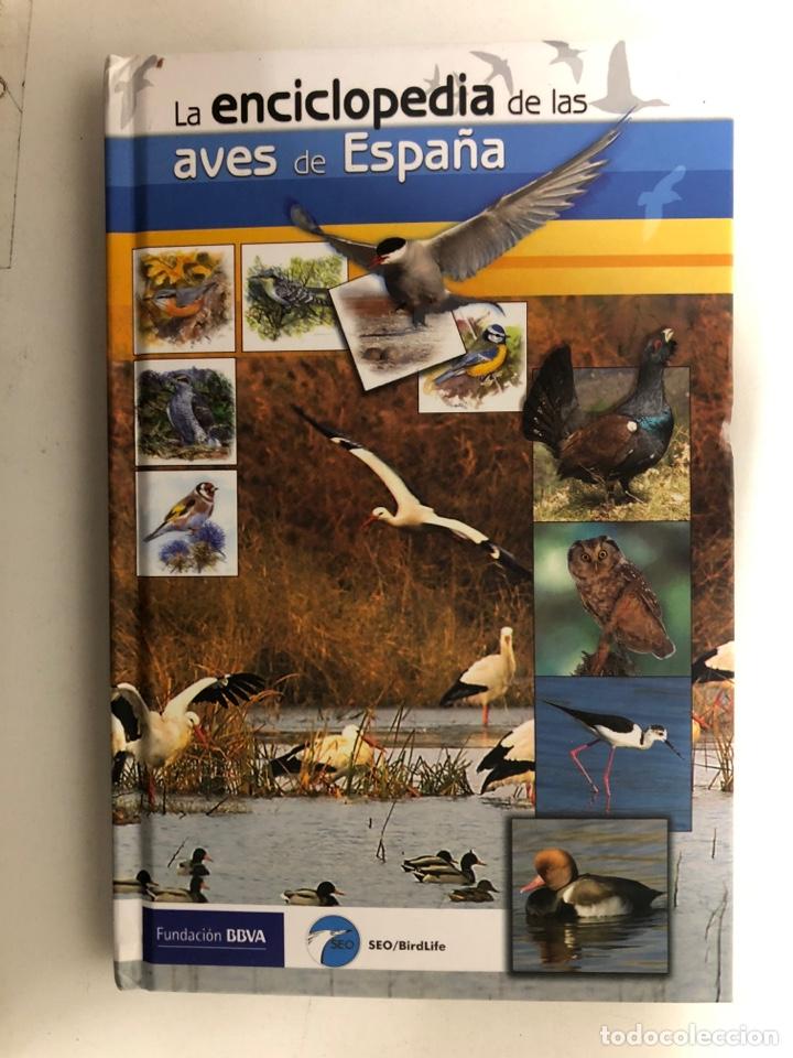 La Enciclopedia De Las Aves De España Fundació Comprar Libros De Biología Y Botánica En Todocoleccion 120831206