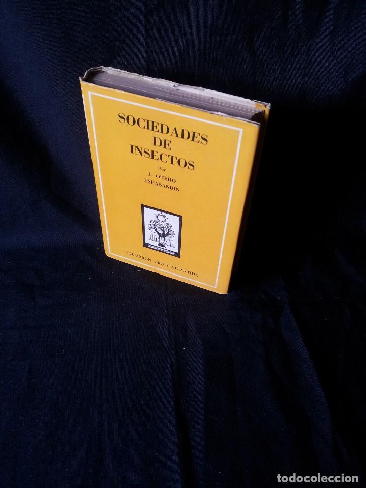 J. OTERO ESPASANDIN - SOCIEDADES DE INSECTOS - COLECCION ORO 9/9 BIS - ATLANTIDA 3ª EDICION 1952 (Libros de Segunda Mano - Ciencias, Manuales y Oficios - Biología y Botánica)