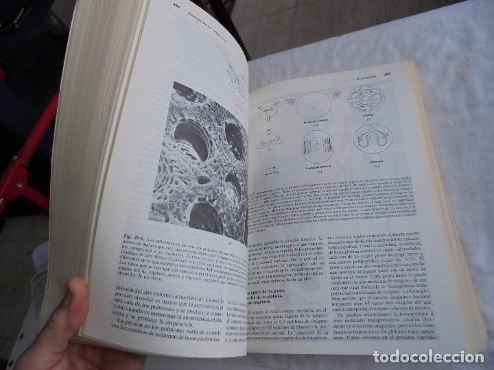 Libros de segunda mano: INVITACION A LA BIOLOGIA.HELENA CURTIS/N.SUE BARNES.EDITORIAL PANAMERICANA 1987 - Foto 6 - 121444955