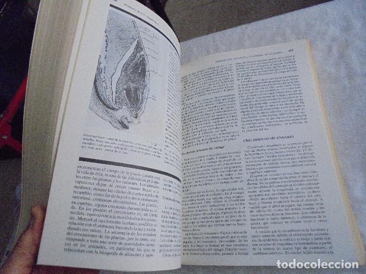 Libros de segunda mano: INVITACION A LA BIOLOGIA.HELENA CURTIS/N.SUE BARNES.EDITORIAL PANAMERICANA 1987 - Foto 7 - 121444955