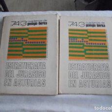 Libros de segunda mano: ESTRATIGRAFIA DEL JURASICO EN ASTURIAS.CUADERNOS DE GEOLOGIA 2 TOMOS.LUIS CARLOS SUAREZ VEGA.1974 . Lote 121679403