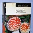 Libros de segunda mano: LAS SETAS. GUÍA FOTOGRÁFICA Y DESCRIPTIVA. 800 ESPECIES A TODO COLOR.. Lote 122207047