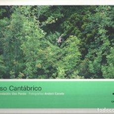 Libros de segunda mano: EL OSO CANTABRICO.. Lote 122286815