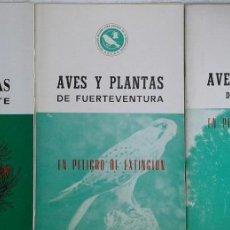 Libros de segunda mano: LOTE DE 3 LIBRITOS SOBRE AVES Y PLANTAS DE CANARIAS - FUERTEVENTURA, LANZAROTE Y GRAN CANARIA . Lote 122400771