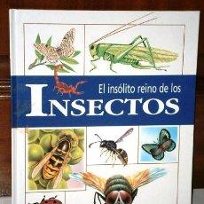 Libros de segunda mano: EL INSÓLITO REINO DE LOS INSECTOS POR ANA CAÑAS Y ED. SUSAETA EN MADRID 1999. Lote 122618487