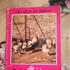 Libros de segunda mano: MIS GALLINAS - COLECCIÓN 'MIS AMIGOS LOS ANIMALES' - 1966. Lote 123428659