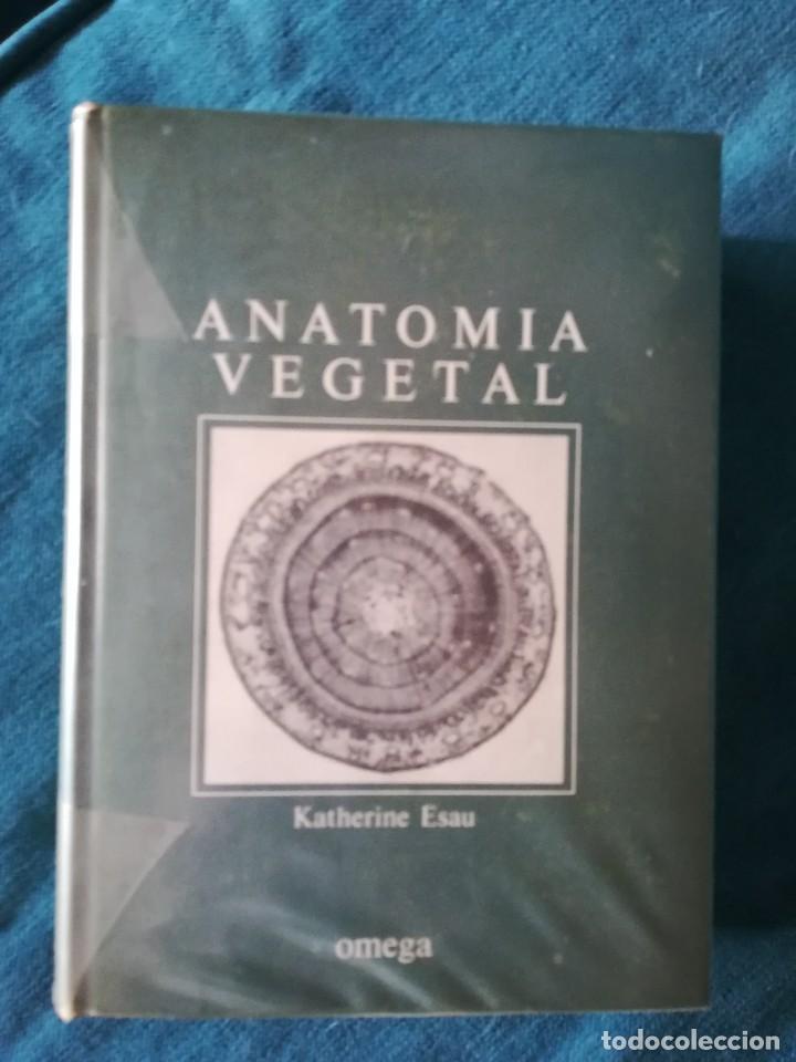 anatomía vegetal, esaú, editorial omega 1972. 2 - Comprar Libros de ...