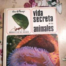 Libros de segunda mano: VIDA SECRETA DE LOS ANIMALES - WALT DISNEY - 1968. Lote 124295555