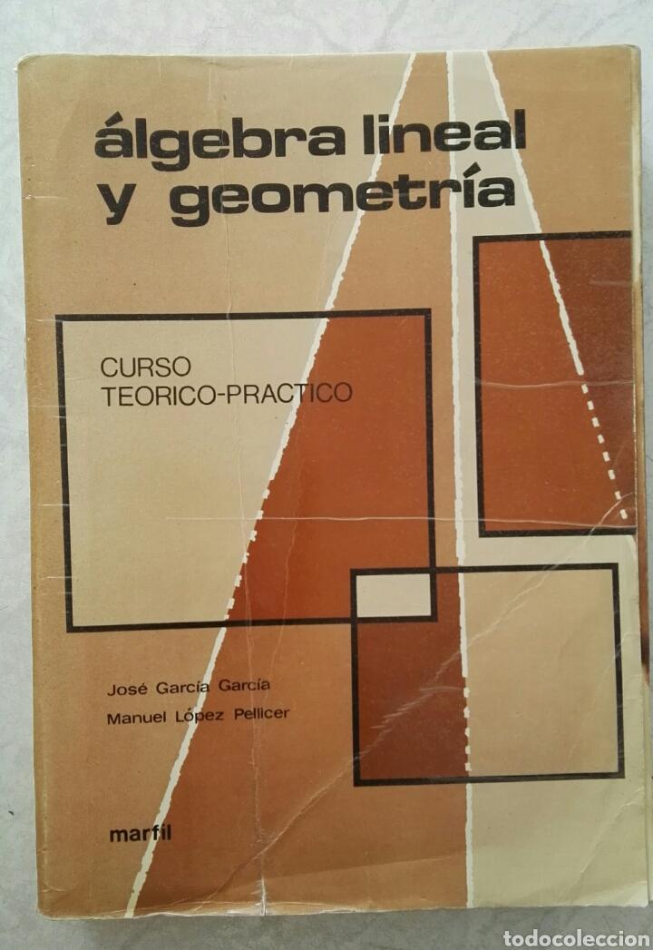 ÁLGEBRA LINEAL Y GEOMETRÍA CURSO TEÓRICO-PRÁCTICO JOSE GARCÍA GARCÍA (Libros de Segunda Mano - Ciencias, Manuales y Oficios - Física, Química y Matemáticas)