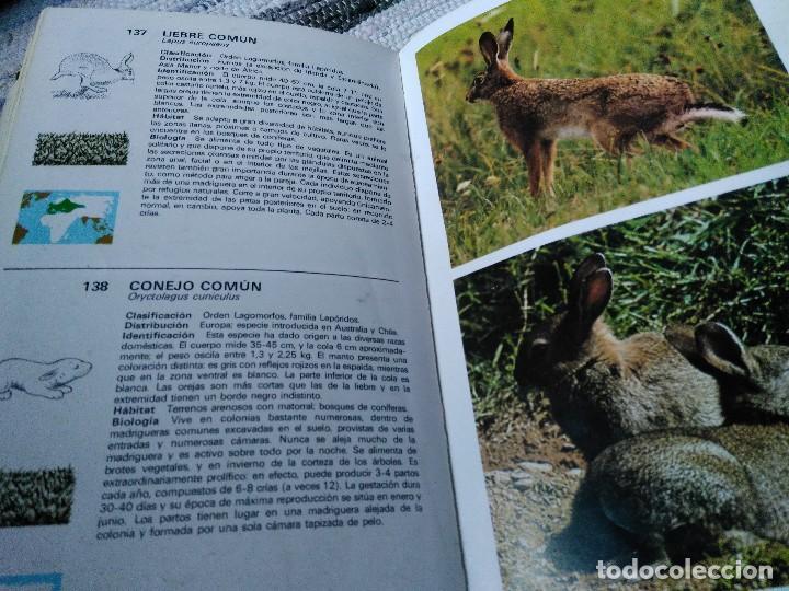 Libros de segunda mano: GUÍA DE MAMÍFEROS. GRIJALBO - Foto 3 - 125221863