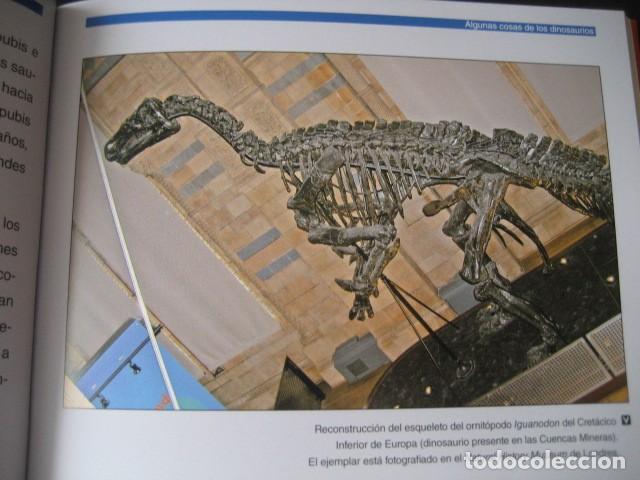 Libros de segunda mano: LOS DINOSAURIOS DE LAS CUENCAS MINERAS DE TERUEL. FOSILES, PALEONTOLOGIA - Foto 4 - 142457208