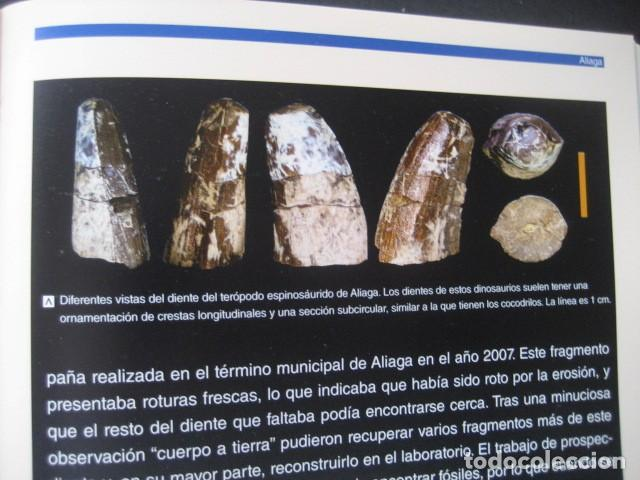 Libros de segunda mano: LOS DINOSAURIOS DE LAS CUENCAS MINERAS DE TERUEL. FOSILES, PALEONTOLOGIA - Foto 5 - 142457208