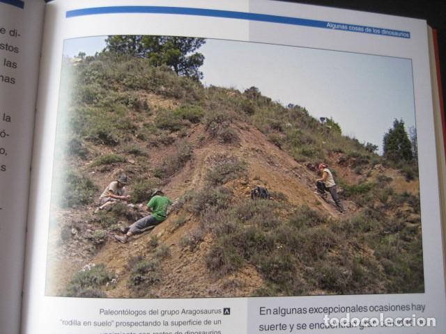 Libros de segunda mano: LOS DINOSAURIOS DE LAS CUENCAS MINERAS DE TERUEL. FOSILES, PALEONTOLOGIA - Foto 9 - 142457208