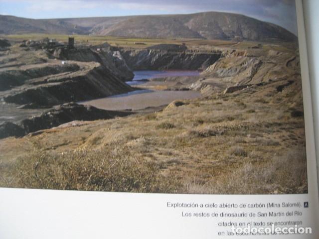 Libros de segunda mano: LOS DINOSAURIOS DE LAS CUENCAS MINERAS DE TERUEL. FOSILES, PALEONTOLOGIA - Foto 11 - 142457208