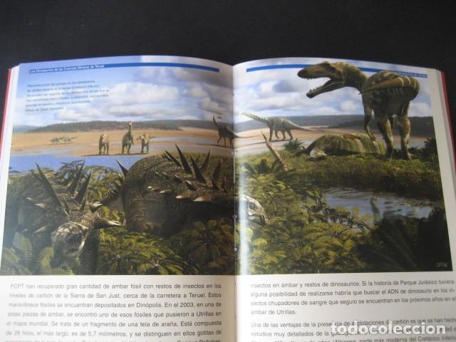 Libros de segunda mano: LOS DINOSAURIOS DE LAS CUENCAS MINERAS DE TERUEL. FOSILES, PALEONTOLOGIA - Foto 12 - 142457208