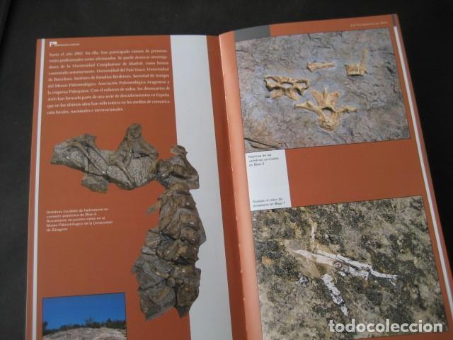 Libros de segunda mano: LIBRO FOSILES, YACIMIENTOS DE DINOSAURIOS DE AREN (HUESCA). FOSIL, PALEONTOLOGIA - Foto 2 - 126119315