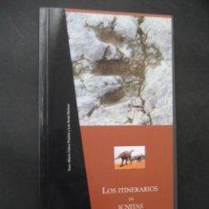 Libros de segunda mano: LIBRO FOSILES, ICNITAS DE EL CASTELLAR (TERUEL). FOSIL, PALEONTOLOGIA, DINOSAURIOS. Lote 126119463