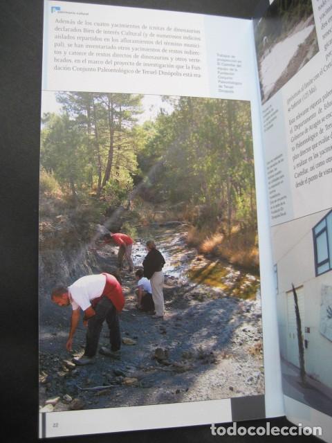 Libros de segunda mano: LIBRO FOSILES, ICNITAS DE EL CASTELLAR (TERUEL). FOSIL, PALEONTOLOGIA, DINOSAURIOS - Foto 2 - 126119463