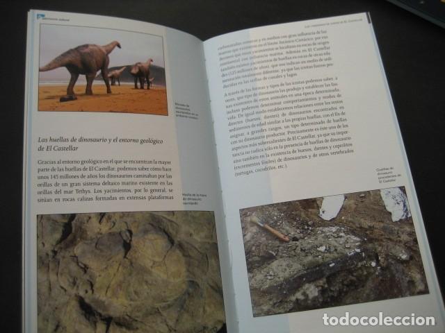 Libros de segunda mano: LIBRO FOSILES, ICNITAS DE EL CASTELLAR (TERUEL). FOSIL, PALEONTOLOGIA, DINOSAURIOS - Foto 3 - 126119463