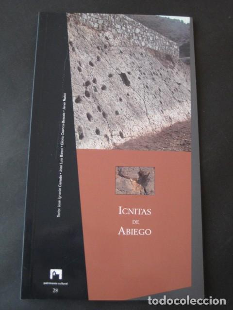 LIBRO FOSILES, ICNITAS DE ABIEGO (HUESCA). FOSIL, PALEONTOLOGIA, DINOSAURIOS (Libros de Segunda Mano - Ciencias, Manuales y Oficios - Paleontología y Geología)