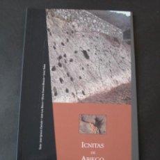 Libros de segunda mano: LIBRO FOSILES, ICNITAS DE ABIEGO (HUESCA). FOSIL, PALEONTOLOGIA, DINOSAURIOS. Lote 126119619