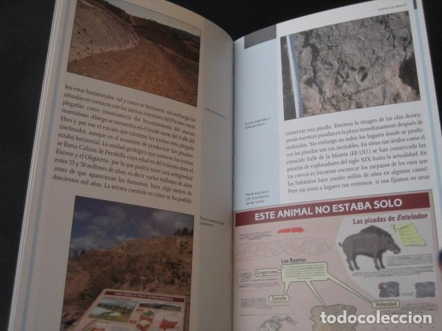 Libros de segunda mano: LIBRO FOSILES, ICNITAS DE ABIEGO (HUESCA). FOSIL, PALEONTOLOGIA, DINOSAURIOS - Foto 4 - 126119619