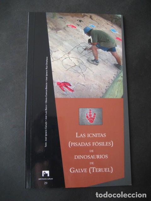 LIBRO FOSILES, ICNITAS DE DINOSAURIOS GALVE (TERUEL). FOSIL, PALEONTOLOGIA. (Libros de Segunda Mano - Ciencias, Manuales y Oficios - Paleontología y Geología)