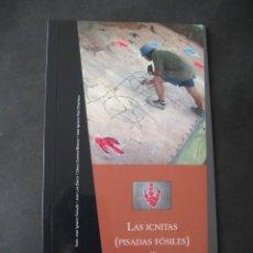 Libros de segunda mano: LIBRO FOSILES, ICNITAS DE DINOSAURIOS GALVE (TERUEL). FOSIL, PALEONTOLOGIA.. Lote 126119963