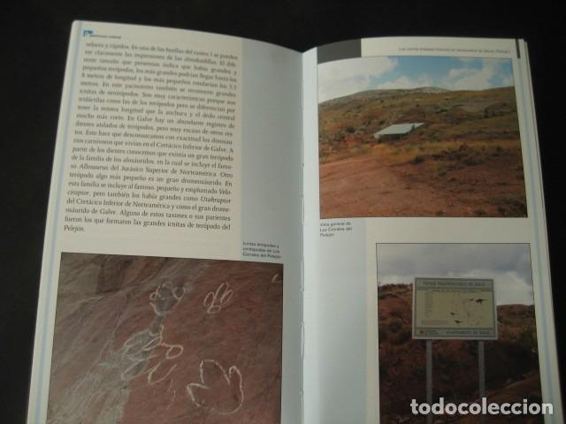 Libros de segunda mano: LIBRO FOSILES, ICNITAS DE DINOSAURIOS GALVE (TERUEL). FOSIL, PALEONTOLOGIA. - Foto 2 - 126119963