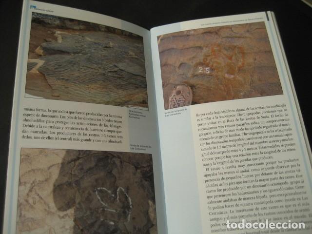 Libros de segunda mano: LIBRO FOSILES, ICNITAS DE DINOSAURIOS GALVE (TERUEL). FOSIL, PALEONTOLOGIA. - Foto 3 - 126119963