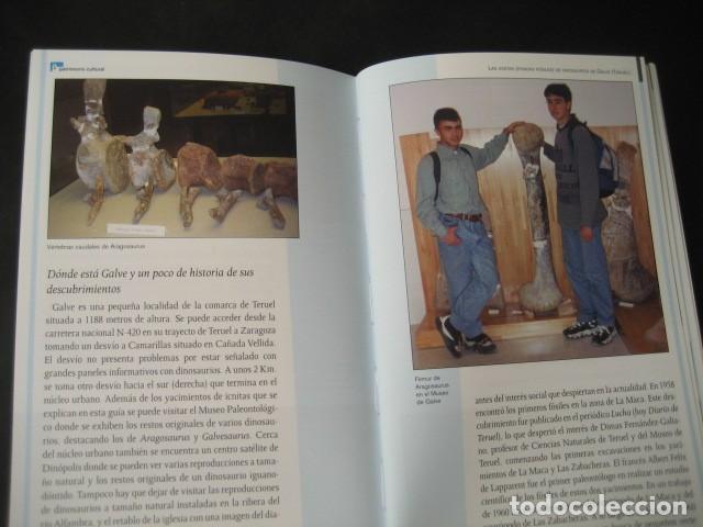 Libros de segunda mano: LIBRO FOSILES, ICNITAS DE DINOSAURIOS GALVE (TERUEL). FOSIL, PALEONTOLOGIA. - Foto 4 - 126119963