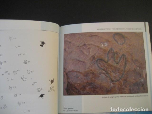 Libros de segunda mano: LIBRO FOSILES, ICNITAS DE DINOSAURIOS GALVE (TERUEL). FOSIL, PALEONTOLOGIA. - Foto 5 - 126119963
