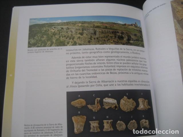 Libros de segunda mano: CARTILLAS TUROLENSES. DINOPOLIS Y LA PALEONTOLOGIA TUROLENSE. FOSIL, FOSILES, DINOSAURIOS - Foto 3 - 126120723