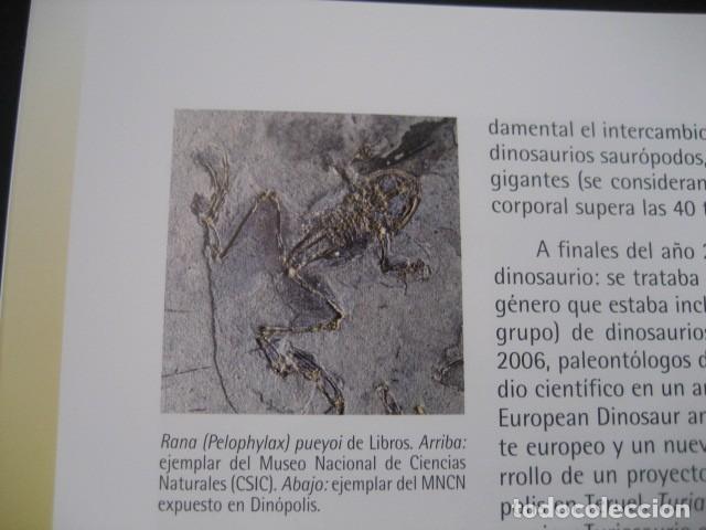 Libros de segunda mano: CARTILLAS TUROLENSES. DINOPOLIS Y LA PALEONTOLOGIA TUROLENSE. FOSIL, FOSILES, DINOSAURIOS - Foto 5 - 126120723