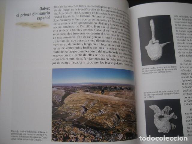 Libros de segunda mano: CARTILLAS TUROLENSES. DINOPOLIS Y LA PALEONTOLOGIA TUROLENSE. FOSIL, FOSILES, DINOSAURIOS - Foto 7 - 126120723