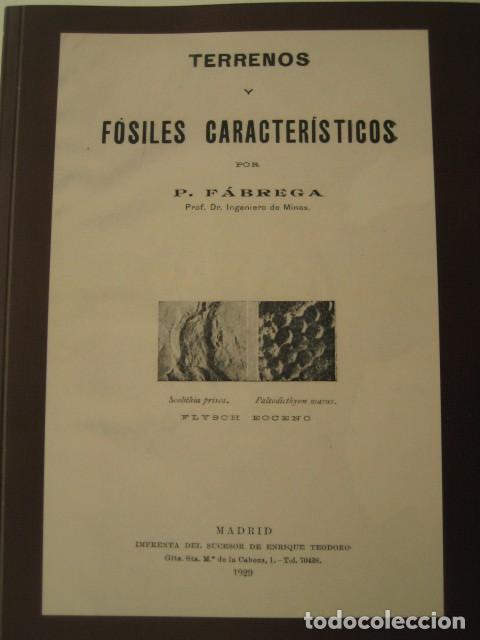LIBRO TERRENOS Y FOSILES CARACTERISTICOS. P. FABREGA 1929. ED. FACSIMIL. PALEONTOLOGIA, FOSIL (Libros de Segunda Mano - Ciencias, Manuales y Oficios - Paleontología y Geología)