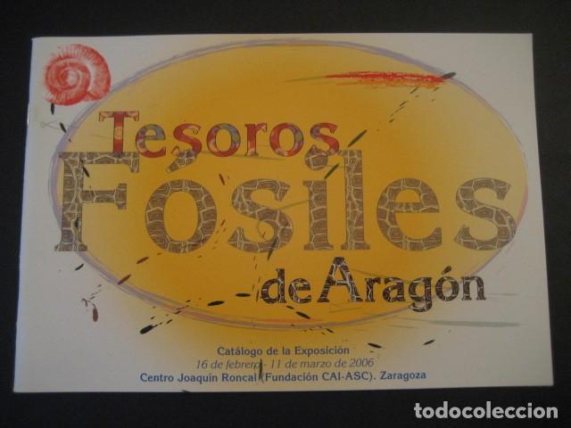 TESOROS FOSILES DE ARAGON. PALEONTOLOGIA, AMMONITES, TRILOBITES, DINOSAURIOS (Libros de Segunda Mano - Ciencias, Manuales y Oficios - Paleontología y Geología)