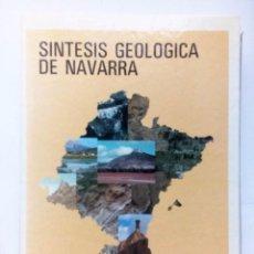 Libros de segunda mano: SÍNTESIS GEOLÓGICA DE NAVARRA JOAQUÍN DEL VALLE LERSUNDI -FERMÍN VILLANUEVA INCLUYE 105 DIAPOSITIVAS. Lote 126310395