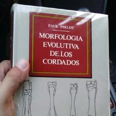 Libros de segunda mano: MORFOLOGÍA EVOLUTIVA DE CORDADOS PAUL PIRLOT OMEGA-BIOLOGIA-PALEONTOLOGIA-ANATOMÍA-FÓSILES. Lote 126346979