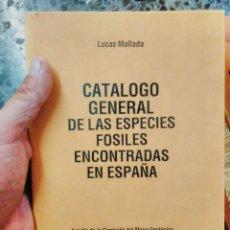 Libros de segunda mano: LUCAS MALLADA.1892 CATÁLOGO GENERAL DE LAS ESPECIES FÓSILES ENCONTRADOS EN ESPAÑA.CON LUGARES FACSI. Lote 165074852