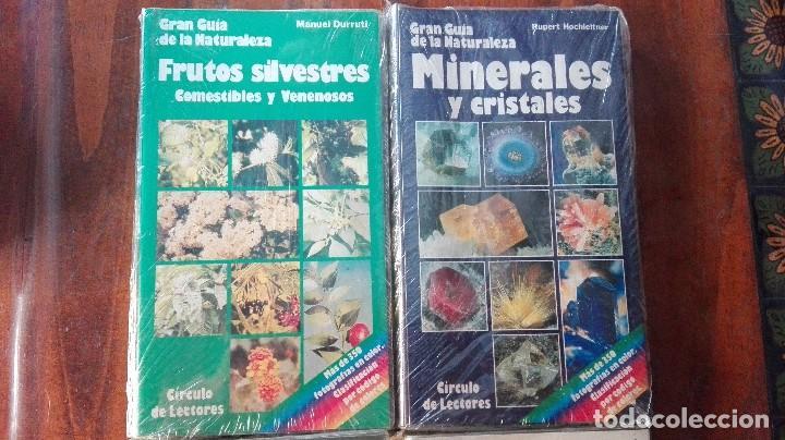 Libros de segunda mano: CUATRO GUÍAS DE LA GRAN GUÍA DE LA NATURALEZA . - Foto 2 - 128746831