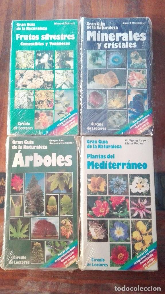 Libros de segunda mano: CUATRO GUÍAS DE LA GRAN GUÍA DE LA NATURALEZA . - Foto 9 - 128746831